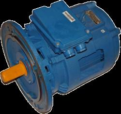 Электродвигатель 4АМН-160S 6/18 3,0/1,0 950/280